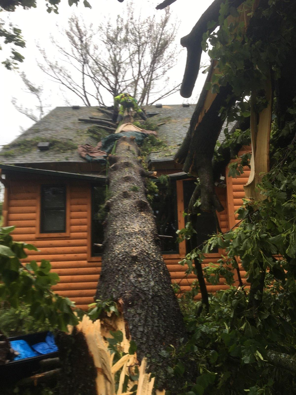 Storm Damage - Tree fell on house