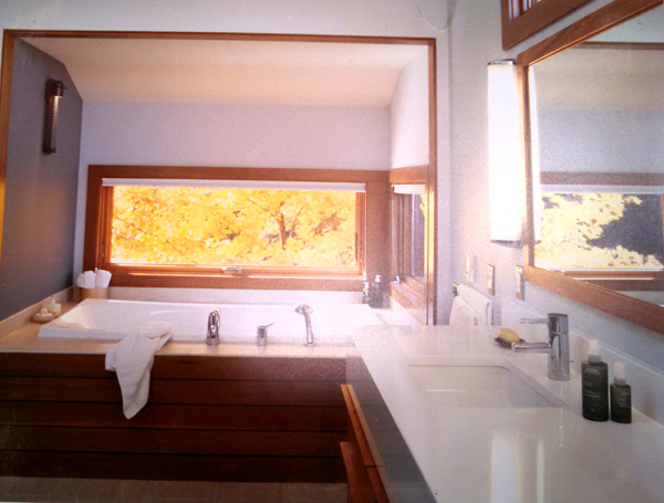Soaking tub is faced with mahogany planking and flanked by sleek horizontal windows at eye level for an intimate view of the woods